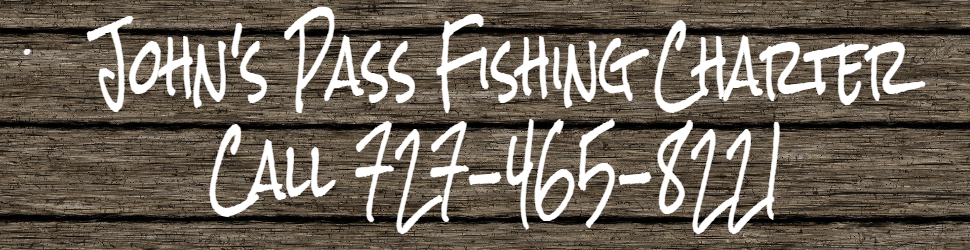Johns Pass Fishing Charter Madeira Beach
